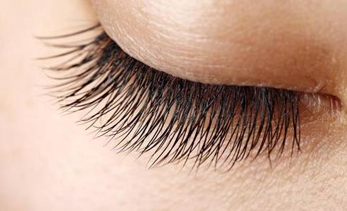 睫毛种植可以维持多久?关于睫毛种植,这些你需要注意!
